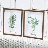 LOBERON Bild 2er Set Herbs