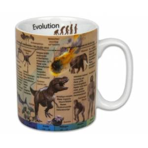 Betzold Wissensbecher Evolution