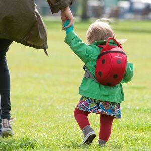 LittleLife Ladybird Toddler Backpack 2 - dětský batoh