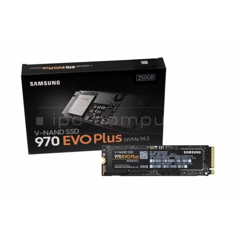 Kingston RBUSNS8154P3 SSD Festplatte 250GB (M.2 22 x 80 mm)
