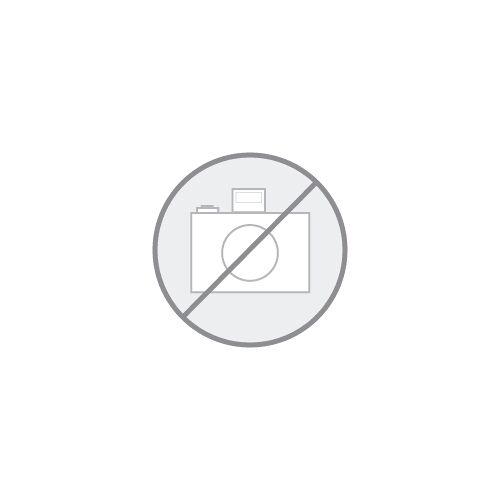 ZEISS Objektmikrometer 5mm/5 + 1mm/100,Durchlicht, kalibriert