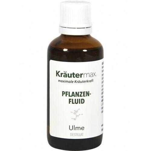 Kräutermax Pflanzenfluid Ulme - 50 ml