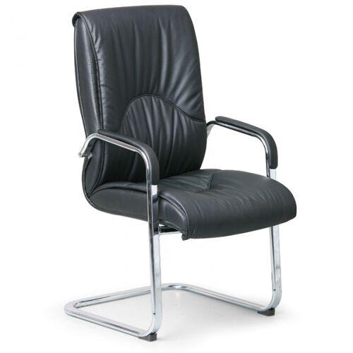 B2B Partner Freischwinger stuhl aus leder lux, leder, schwarz