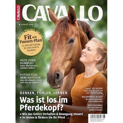 Cavallo Abo