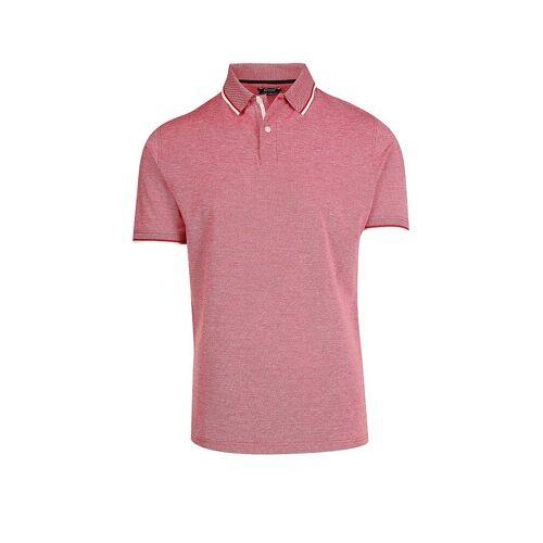 Calvin MAX CALVIN Poloshirt  rot   XL