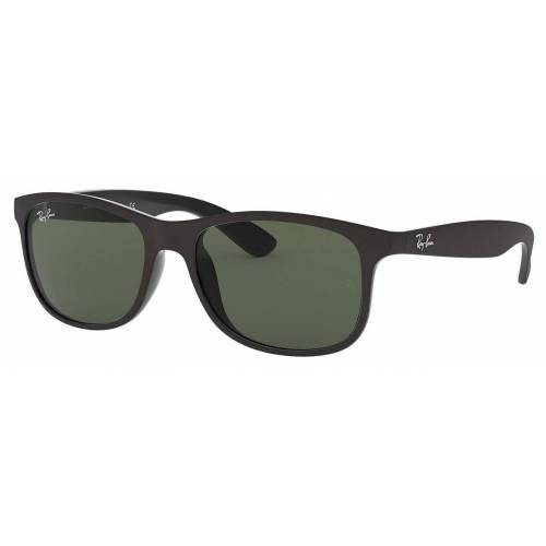 Ray Ban  ANDY RB 4202 606971 55/17 Matte Black