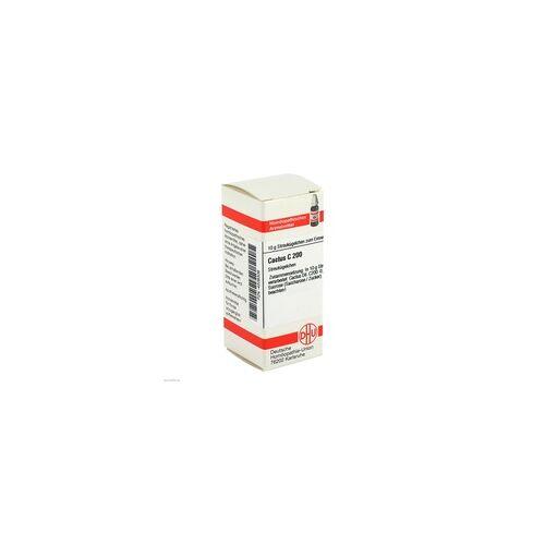 DHU-ARZNEIMITTEL Cactus C 200 Globuli 10 g