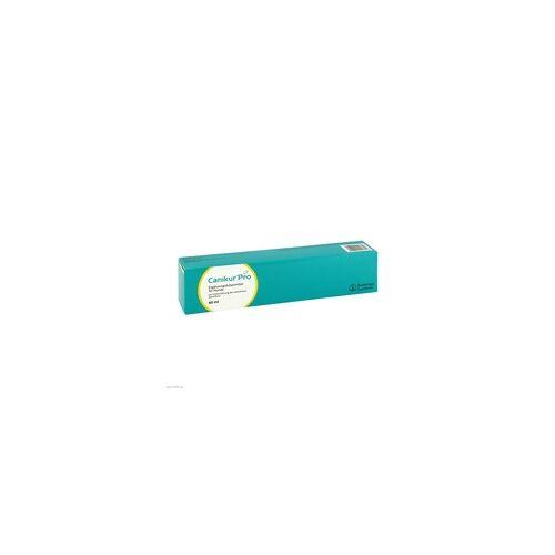 Boehringer Ingelheim Canikur Pro Paste vet. 60 ml