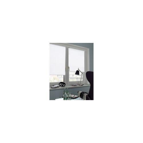 Gardinia Seitenzugrollo weiß, 122 x 160 cm