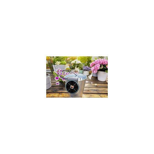 Gardena Solar-Bewässerung AquaBloom Set für bis zu 20 Pflanzen