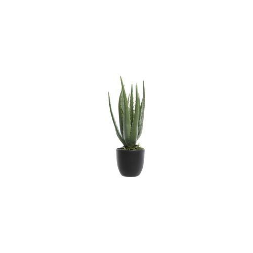Kaemingk künstliche Aloe Vera im Topf grün, Höhe: 35 cm