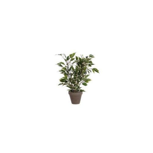 Mica Kunstpflanze Ficus Natasja grün bunt im Topf 40 x 30 cm
