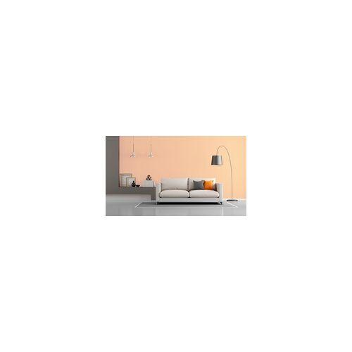 Primaster Wandfarbe Wohnambiente SF502 2,5 l, terracotta