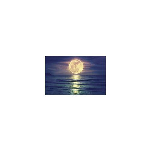 The Wall Deco-Panel Bild - Ocean Moon 90 x 58 cm
