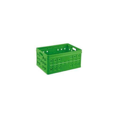 Sunware Klappbox Square 46 l 54 x 38 x 26,5 cm (L x B x H)