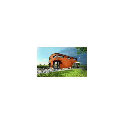 Alpina Dauer-Schutz 4 l, teak