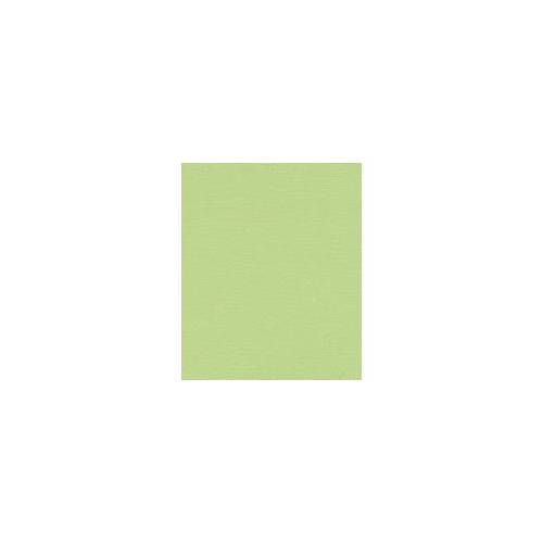 Rasch Vliestapete Hot Spot uni grün, 10,05 x 0,53 m