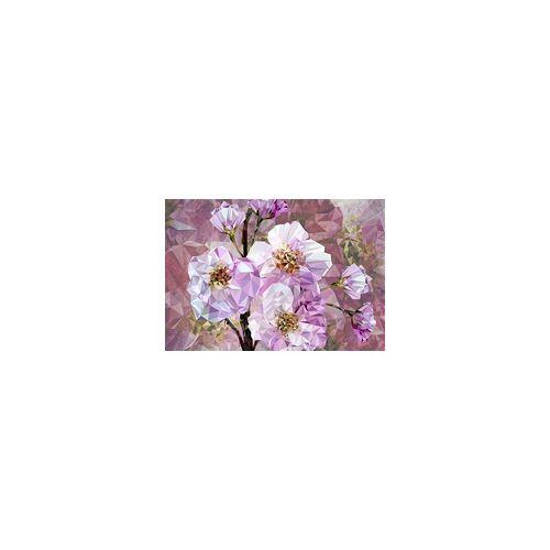 Komar Vliestapete Blooming 368 x 248 cm