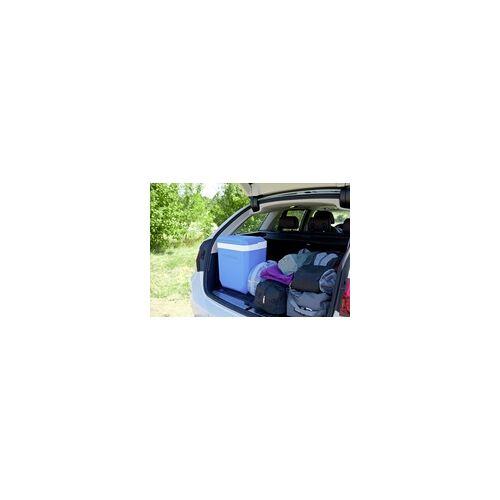 Campingaz Kühlbox Icetime Plus 30 Liter