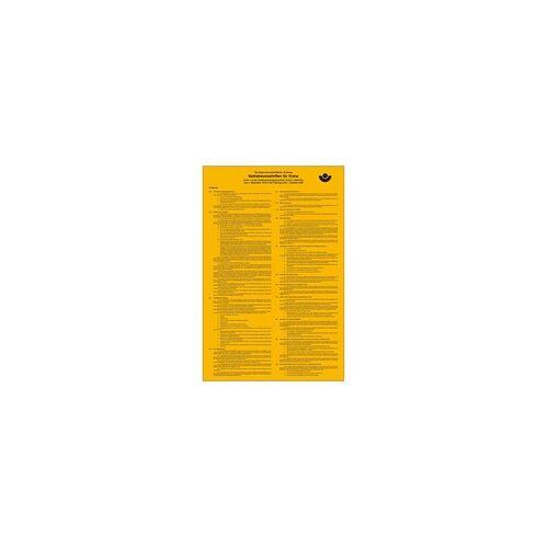 SafetyMarking Aushang Berufsgenossenschaft Betriebsvorschriften für Krane Kunststoff (B x H) 310mm x 475mm 1St.