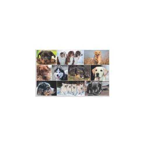 HERMA Schreibunterlage Hunde