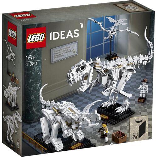 LEGO® LEGO® Ideas 21320 Dinosaurier-Fossilien