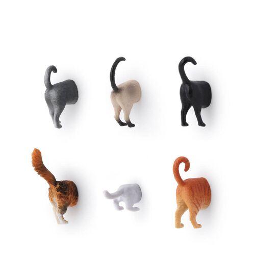 Kikkerland Katzen-Rücken Magnete