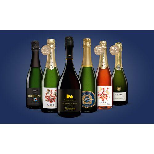 Cava-Genießer-Paket Weinpaket  aus Spanien