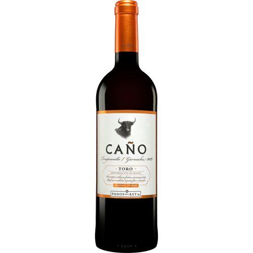 Pagos del Rey Caño 2019 13.5% Vol. Rotwein aus Spanien