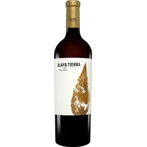 Gil Family Estate - Atalaya Atalaya Alaya Tierra 2019 15.5% Vol. Rotwein Trocken aus Spanien