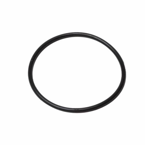 The Snap - O-Ring black Overstock 25  pcs