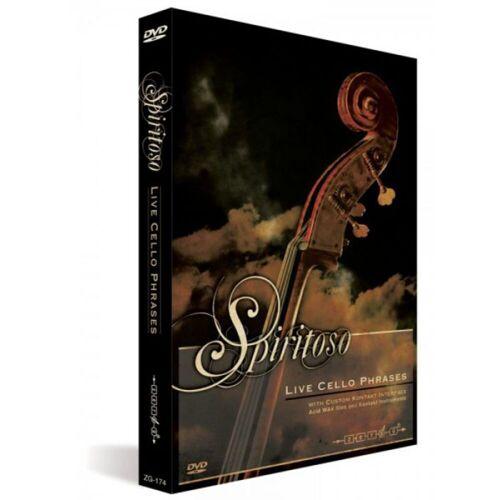 Zero G - Spiritoso Live Cello Phrases