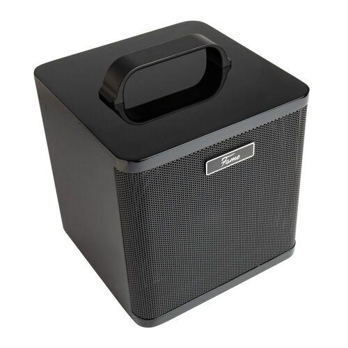 Fame - AG-40A Acoustic Amp