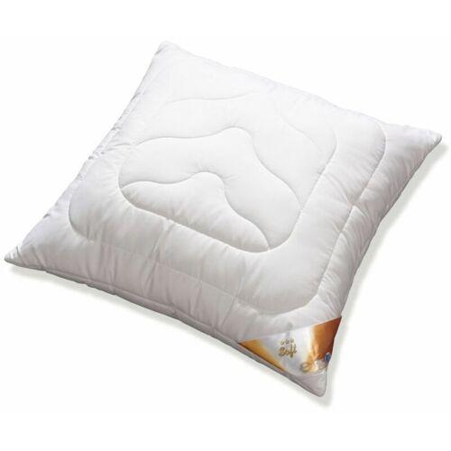SANDERS Kopfkissen Soft weiß, 80 x 80 cm - Sanders