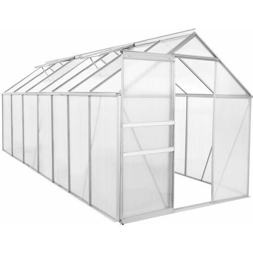 ZELSIUS Aluminium Gewächshaus 430 x 190 cm, 6 mm Platten, 8,17 m² - Zelsius