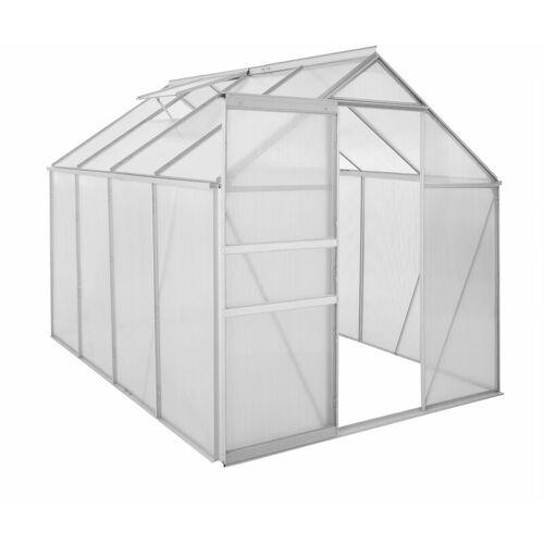 ZELSIUS Aluminium Gewächshaus 250 x 190 cm, 6 mm Platten, 4,75m² - Zelsius