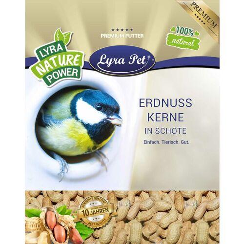 LYRA PET 10 kg ® Erdnusskerne in Schoten HK Afrika - Lyra Pet