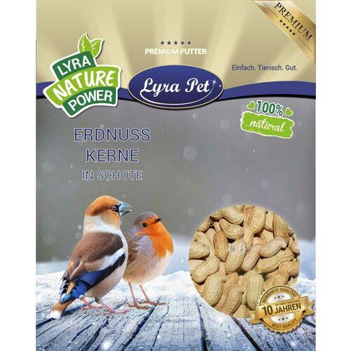 LYRA PET 20 kg Lyra Pet® Erdnusskerne in Schoten HK Indien