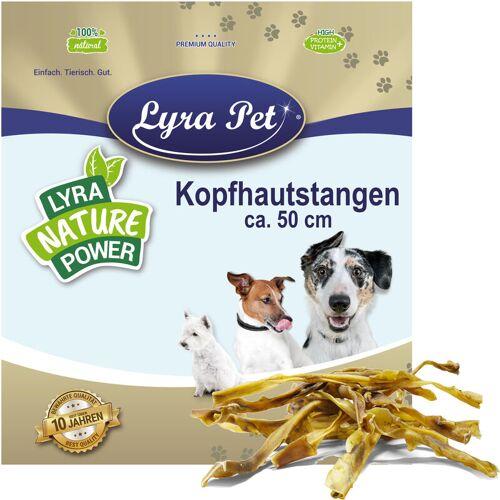 LYRA PET 10 x 10 Stk. ® Kopfhautstangen ca. 50 cm - Lyra Pet