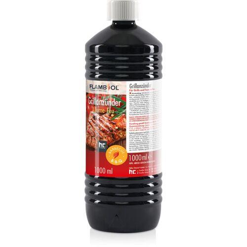 Höfer Chemie - 6 x 1 Liter Grillanzünder flüssig für Grills und