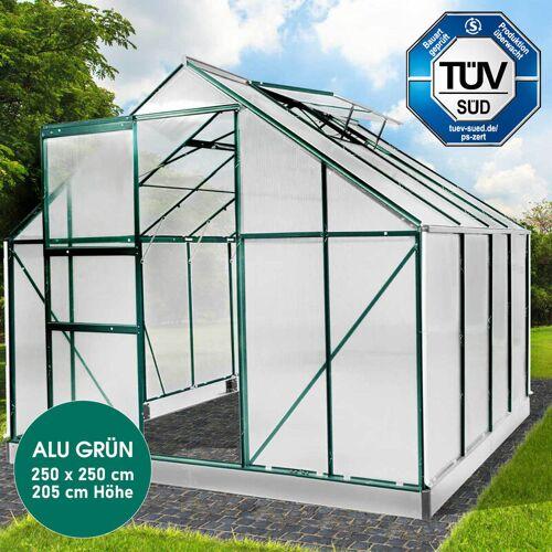 Brast - Aluminium-Gewächshaus 25 430x250x205 grau