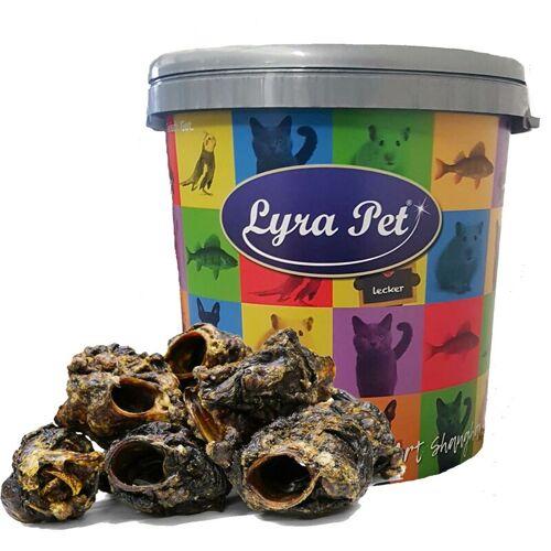 LYRA PET 5 kg ® Rinderkehlköpfe in 30 L Tonne - Lyra Pet