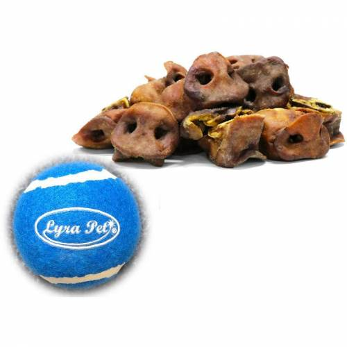 LYRA PET 5 kg ® Schweinenasen + Tennis Ball - Lyra Pet