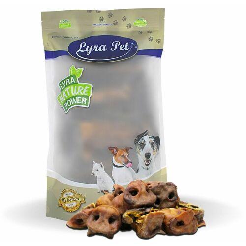 LYRA PET 10 kg ® Schweinenasen - Lyra Pet