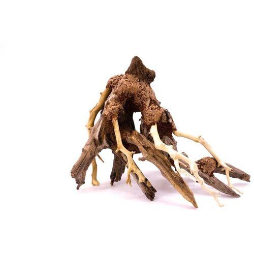 AQUARISTIKWELT24 Octopus Bonsai Baum M Nr.15007 Wurzel Holz Aquarium Deko Aquascaping