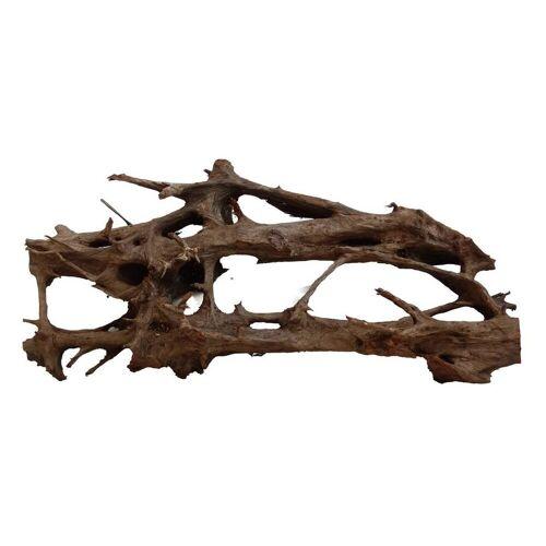 Aquaristikwelt24 - XXXL Mangrovenwurzel Nr.1270 Holz Deko Aquascaping