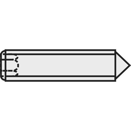 TOOLCRAFT 827334 Madenschraube M3 5mm Stahl 20St. C54221