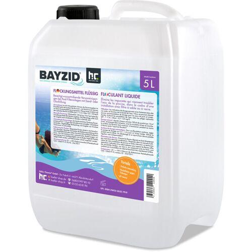 HöFER CHEMIE 2 x 5 Liter BAYZID® Flockungsmittel flüssig für Pools