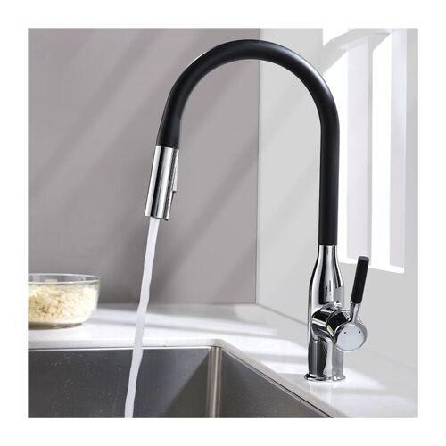 HOMELODY Küchenarmatur 2-Strahlen Armatur Wasserhahn Küche mit ausziehbar brause