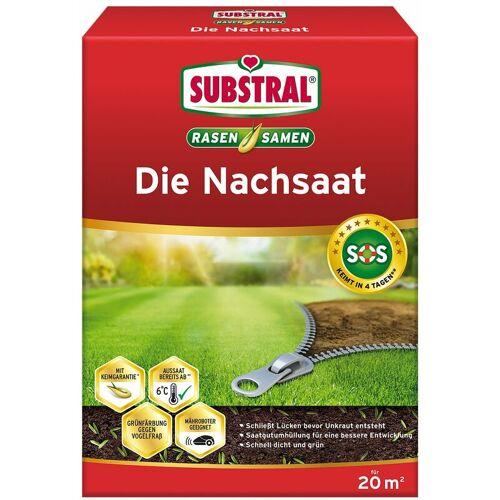 SUBSTRAL® Rasensamen die Nachsaat 400 g für 20 m²